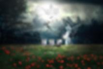 cemetery-3210234_1920.jpg