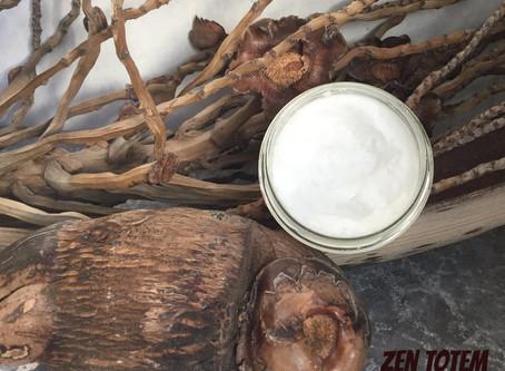 L'huile de noix de coco comme baume à lèvres naturel