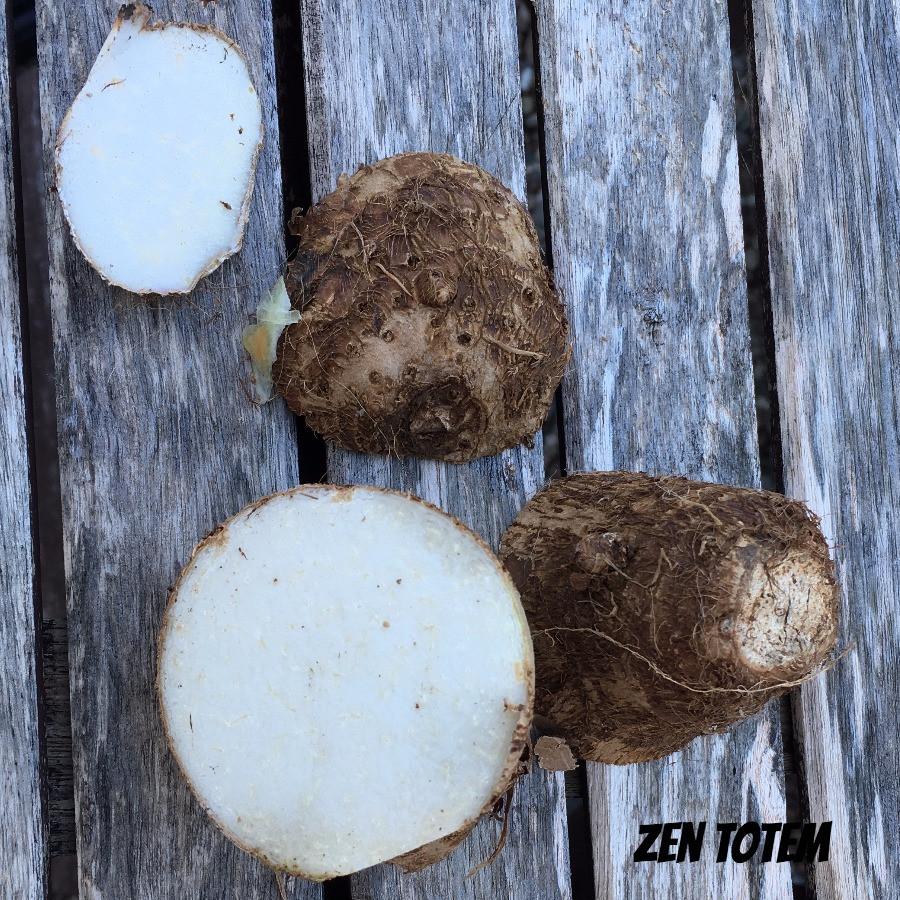 morceaux de tubercules de taro