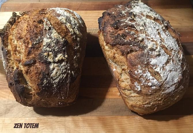 Pain croustillant au blé entier (facile et rapide)