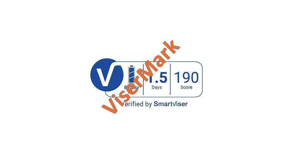 ViserMark Battery Label Score 190