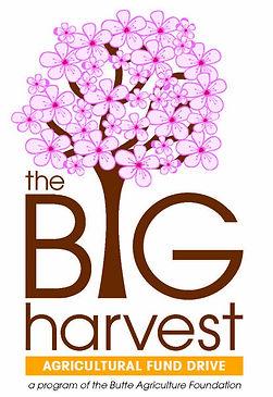 The Big Harvest Logo final (2)_edited.jp
