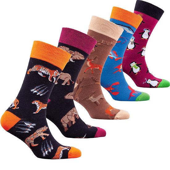Men's Animal Planet Socks