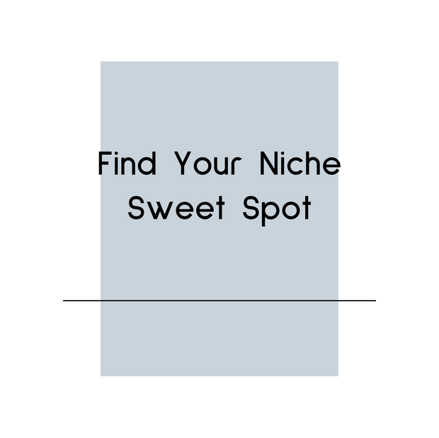 Find Your Niche Sweet Spot