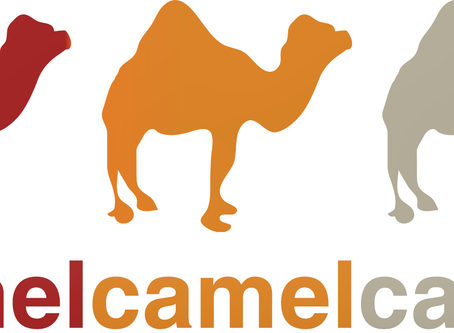 Use Camels to Save Money at Amazon