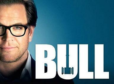 bull-2016.jpg