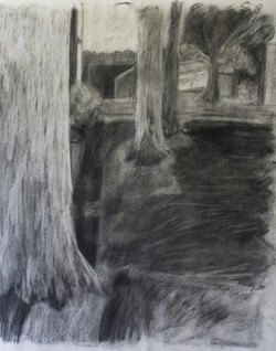 Outdoors (Charcoal)