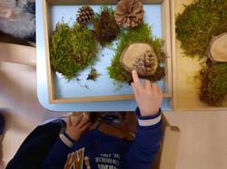 Gioco sensoriale con elementi della natura