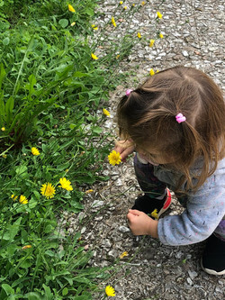 Esploriamo la natura