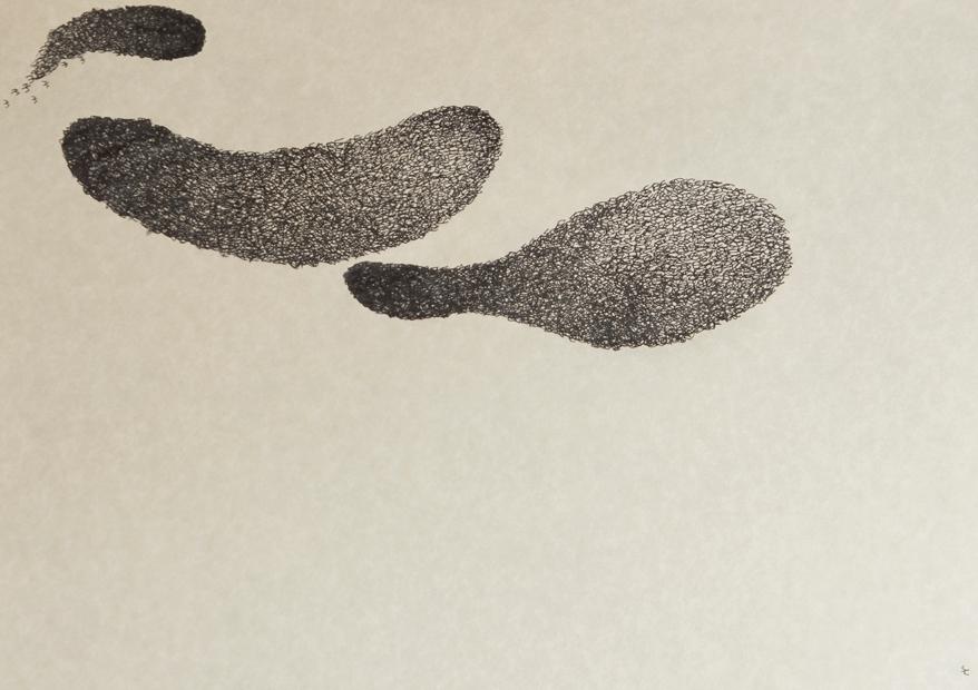 Zetaesse. Chiara Falcone ha intervistato Felice Cimatti per discutere con lui della sua attività da disegnatore, di cosa significa farsi soglia e del movimento fluido degli stormi