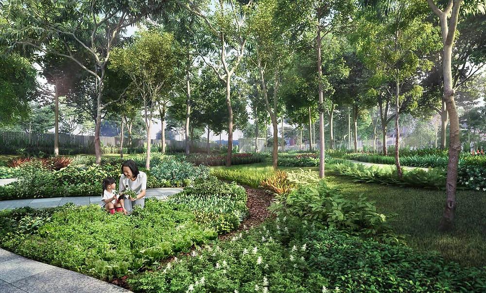 community garden in Garden Residences