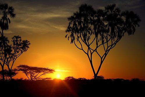 Kenyan Sunrise