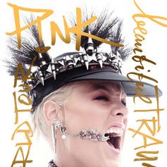 P!nk 2018 Tour Book