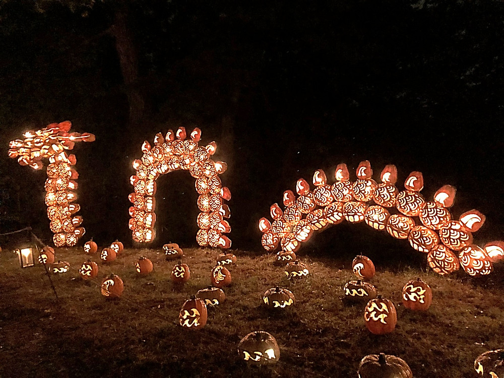 Historic Hudson Valley, Hudson Valley for kids, Curious G and Me, Jack O'Lanterns, The Great Jack O'Lantern Blaze, Van Cortlandt Park, Van Cortlandt Manor, Croton on the Hudson, Best Halloween events for kids
