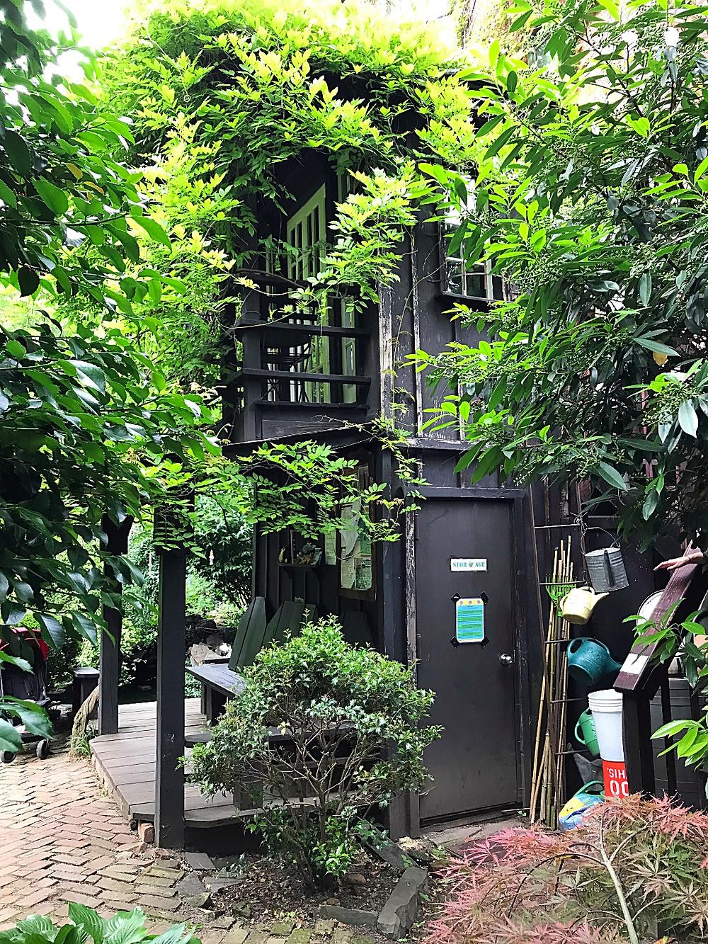 East Village gardens, NYC kids, 6BC Botanical garden