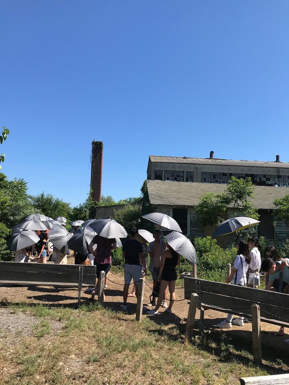Fort Tilden, Rockaway Artists Alliance, Yayoi Kusama, Narcissus Garden, Curious G and Me
