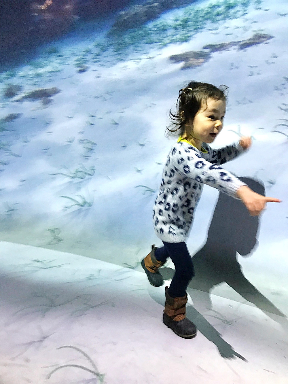 NYC Pop Up, National Geographic Experience, under the ocean, Immersive Ocean Experience,  NYC Indoor Entertainment Guide for kids