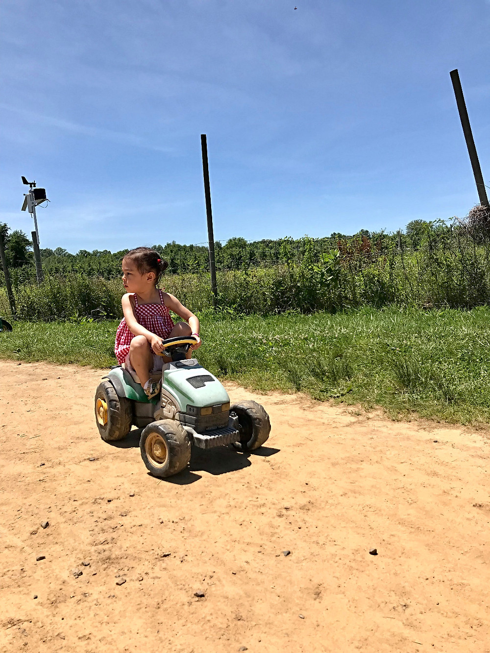 Terhune orchards, Princeton with kids, NYC kids, fashionable kids, Curious G and Me