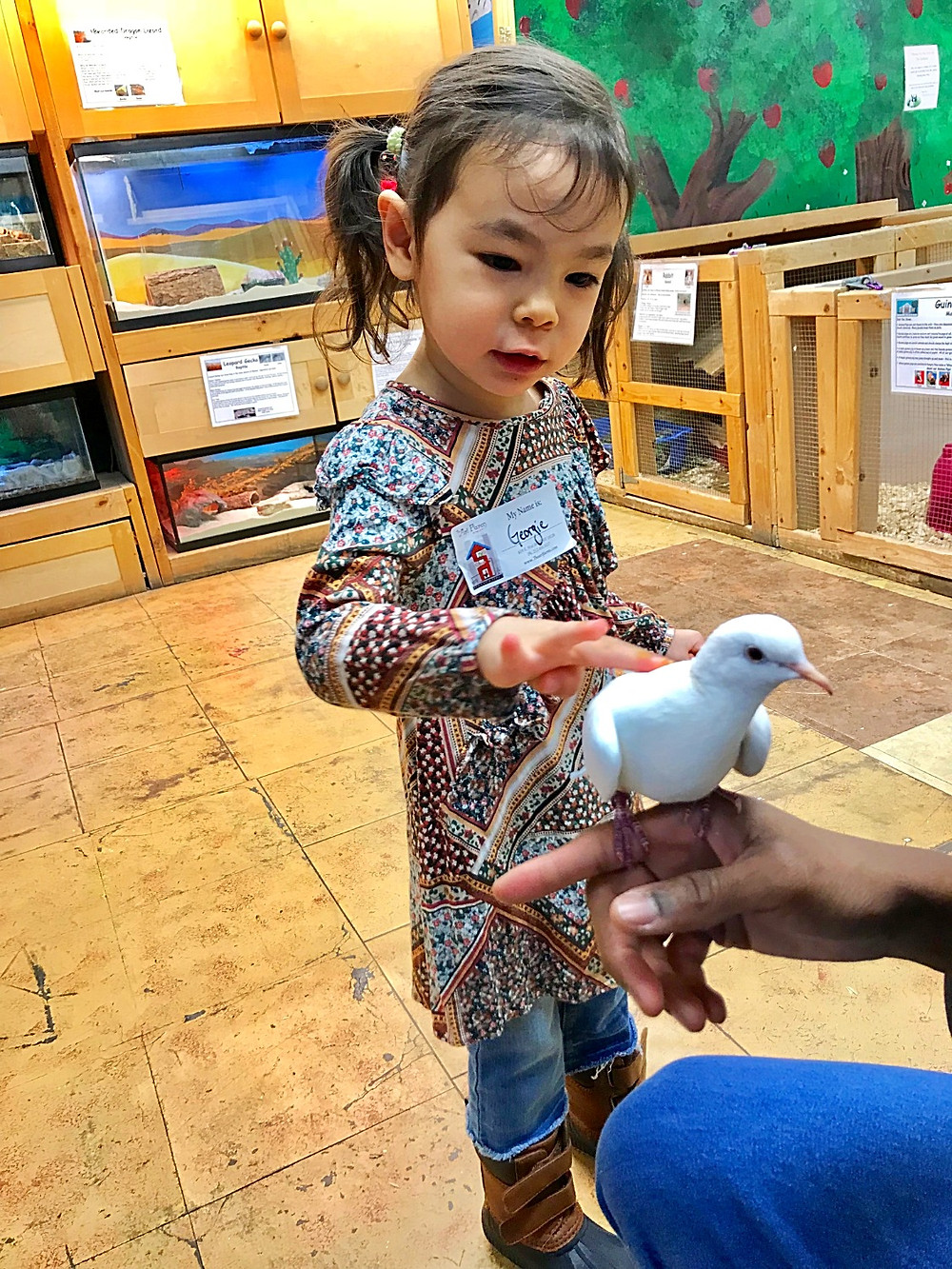 Art Farm in the City, indoor petting zoos in NYC, Curious G and Me, NYC Indoor fun for kids, best play spaces for NYC kids