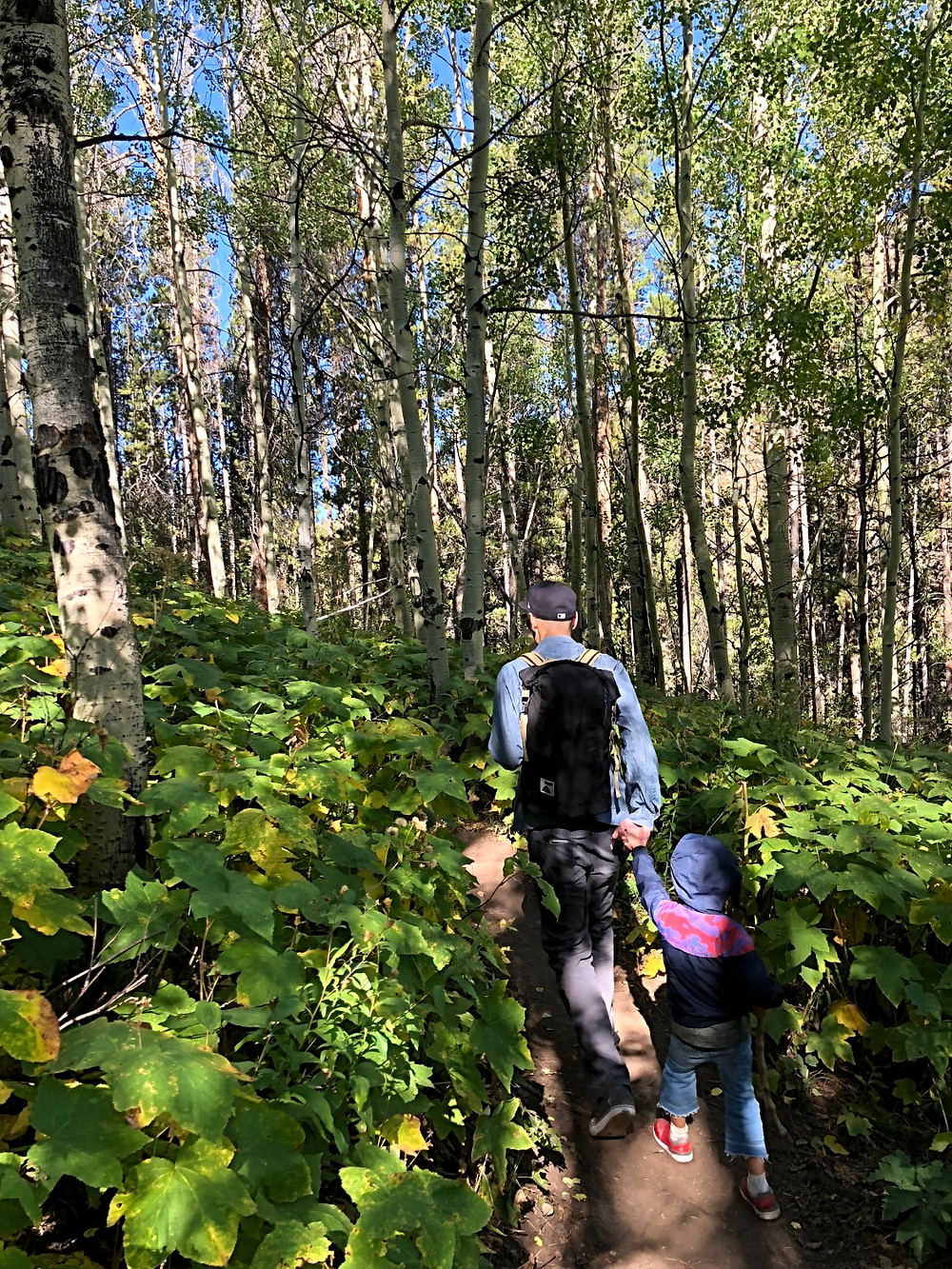 Lionshead Rock Trail, Curious G and Me, best hiking trails for kids, Colorado hiking with kids