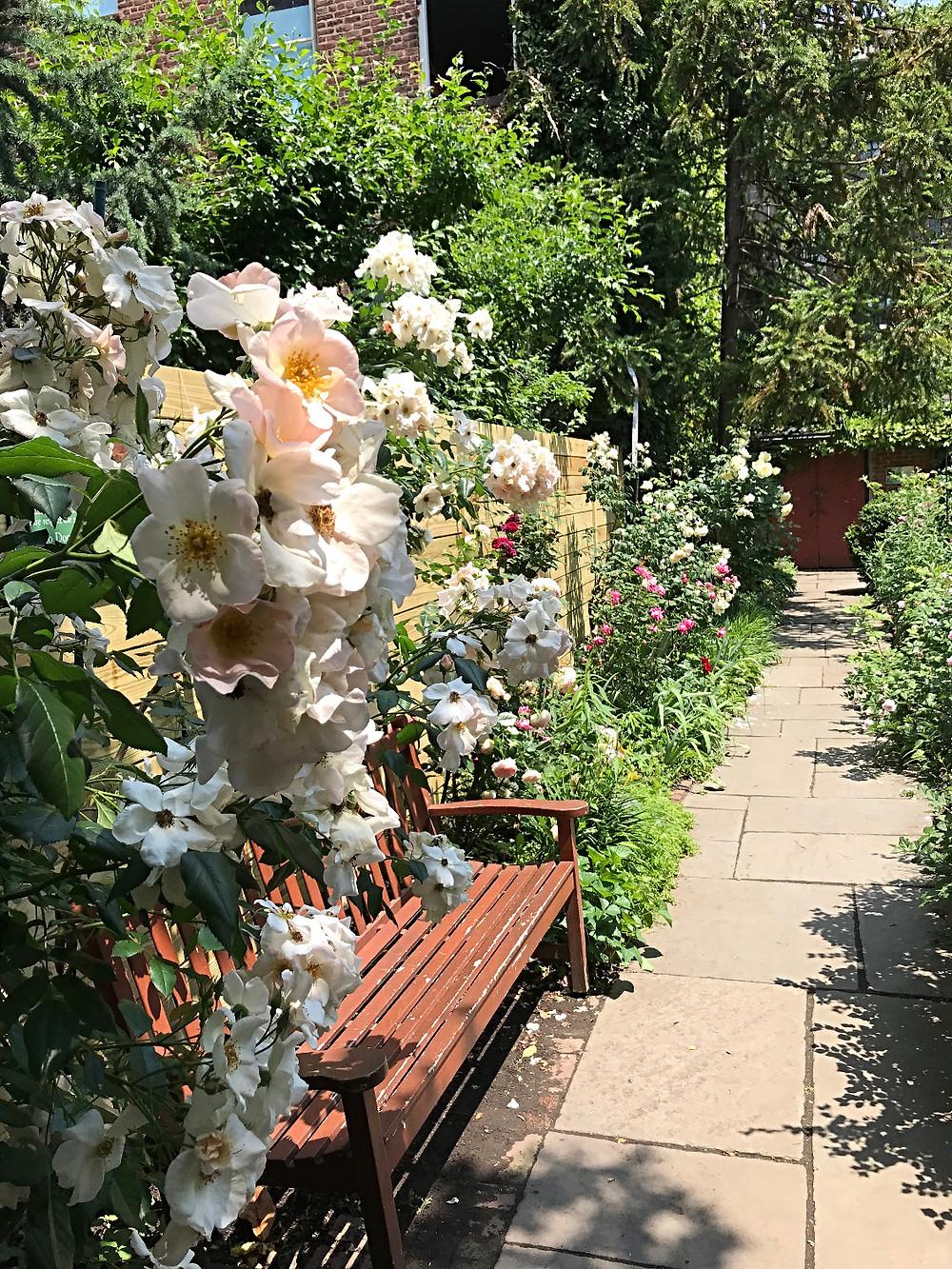 nyc gardens, west village, st luke's garden, nyc kids, nyc summer