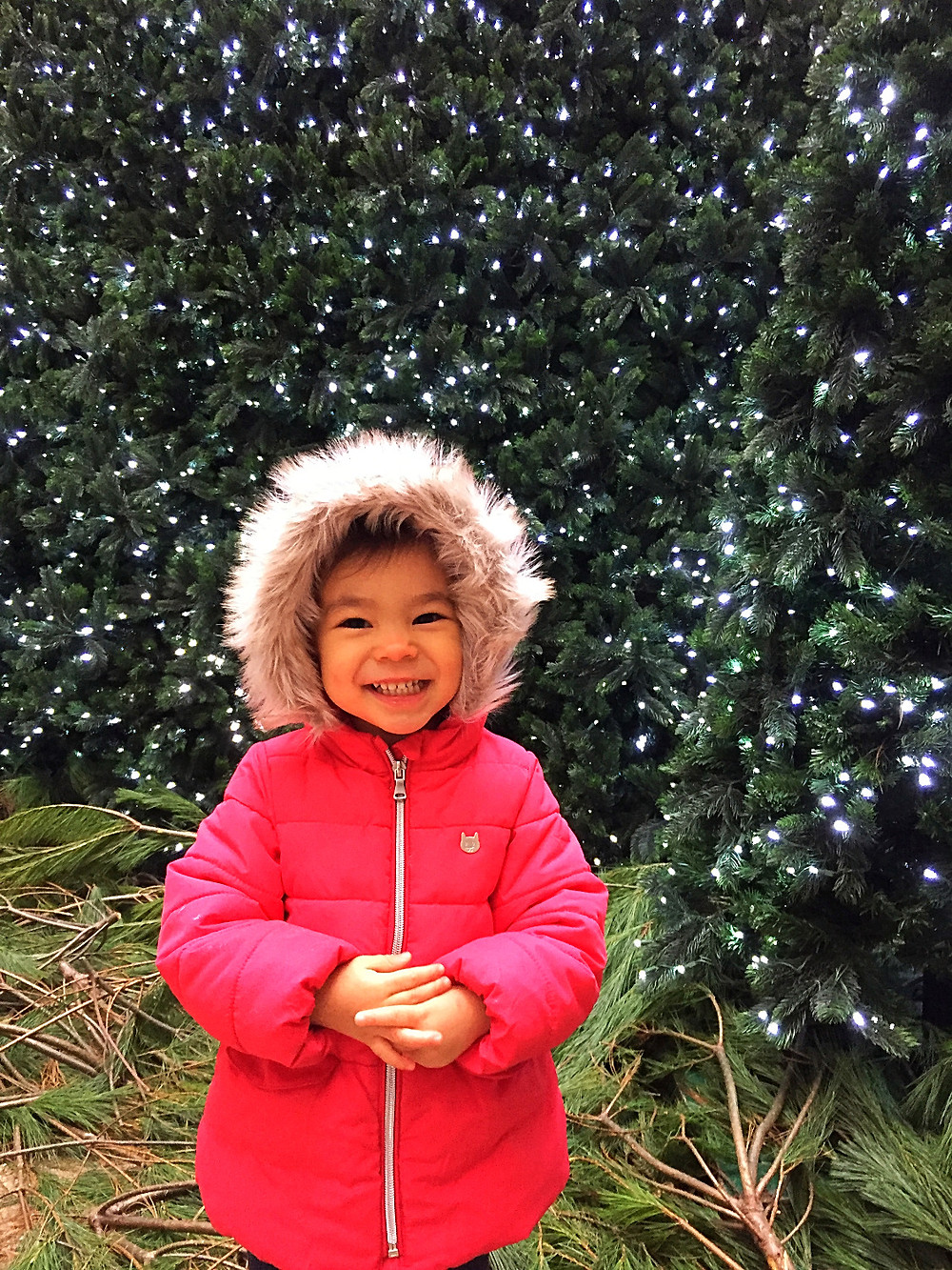 Bloomberg Tower Christmas Tree, Best Christmas Tree in NYC,Holiday Bucket List, Fun things to do in NYC for the holidays with your kids, Instagram Bait, Holiday Pop Up, NYC Pop Up, Free in NYC, Curious G and Me, NYC family, NYC with kids, NYC Christmas, Bloomingdale's
