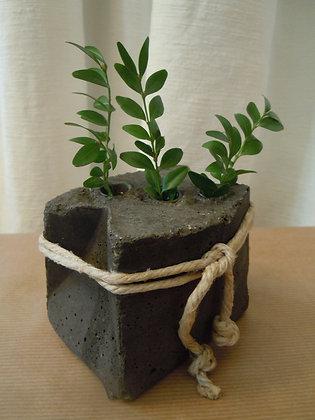 Betonväsli (mit 3-loch) schwarz od. grau