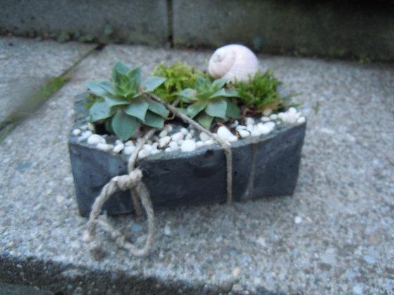 Betonpflanzgefäss rechteckig