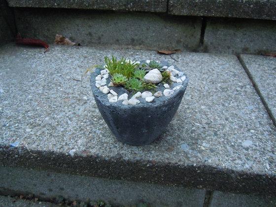 Pflanzgefäss aus Beton