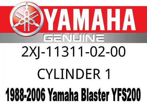 Genuine Yamaha OEM Cylinder