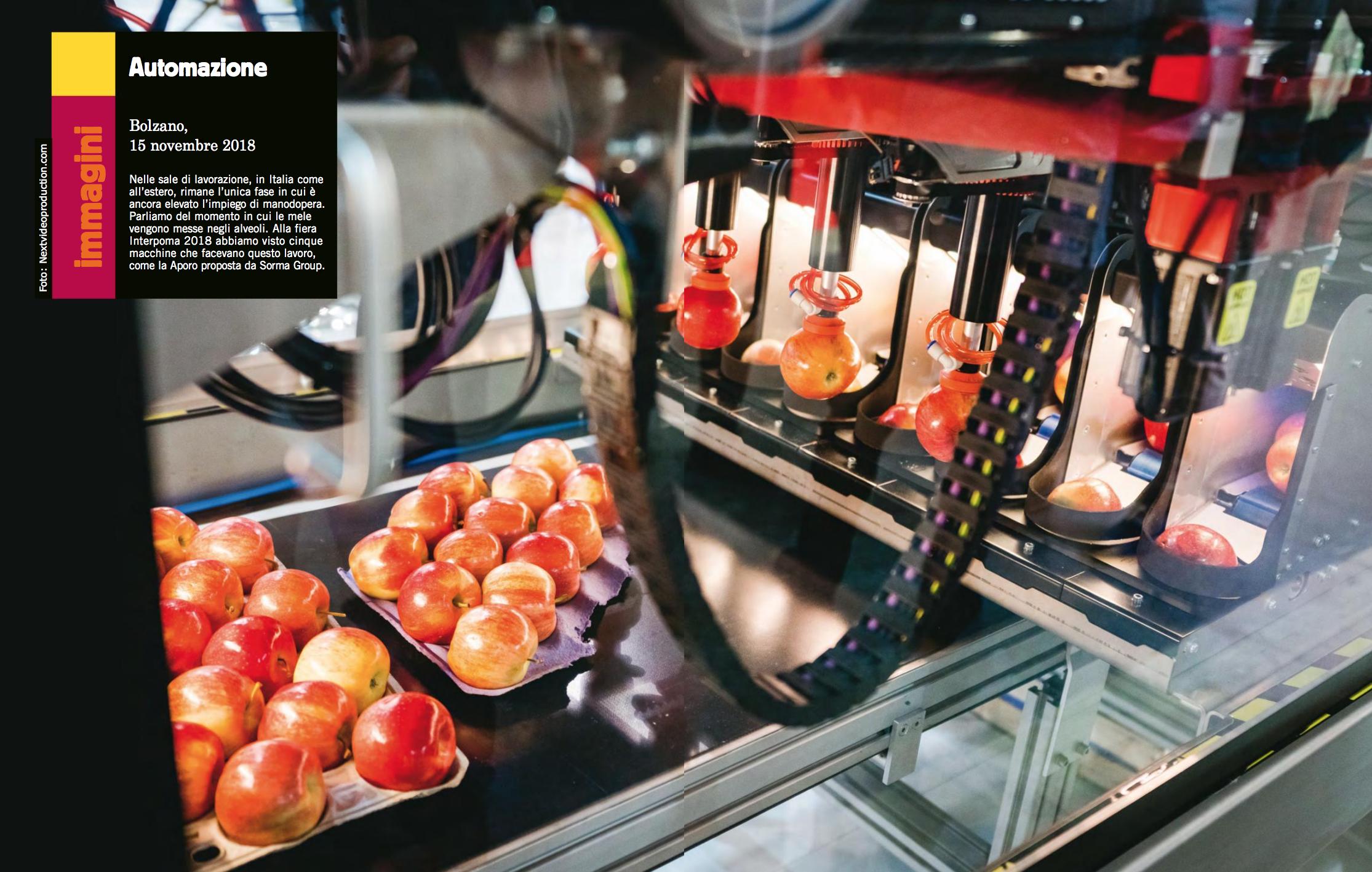 Fruitbook Magazine 01/19