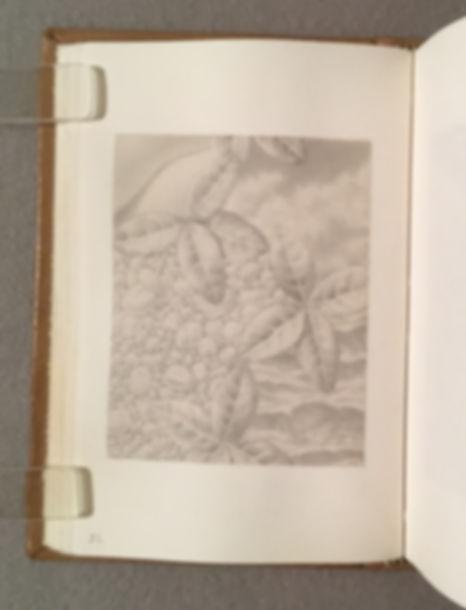 Sketchbook GS 11, Page 32