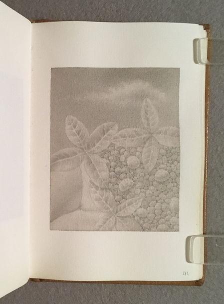 Sketchbook GS 11, Page 41