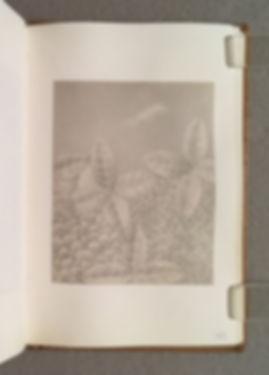 Sketchbook GS 11, Page 43