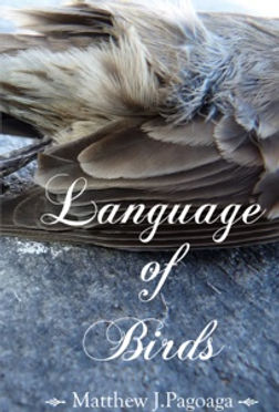 language of birds cover