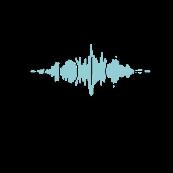 voicewaveupdate.png