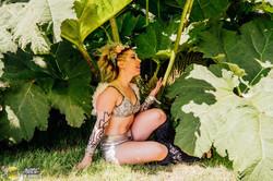 Magical World of Fairy Festivals
