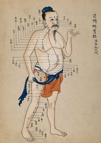 Acupuncture_chart_with_a_series_of_point