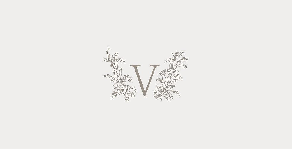 vd-logo.png
