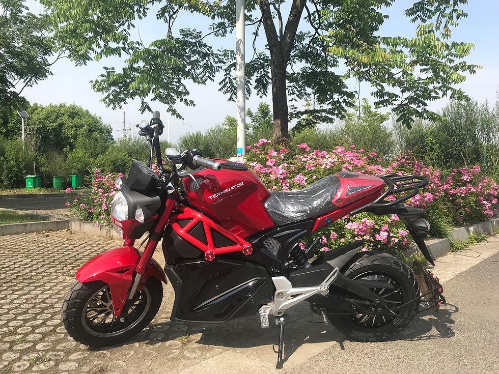 e motor bikes in canada.jpg
