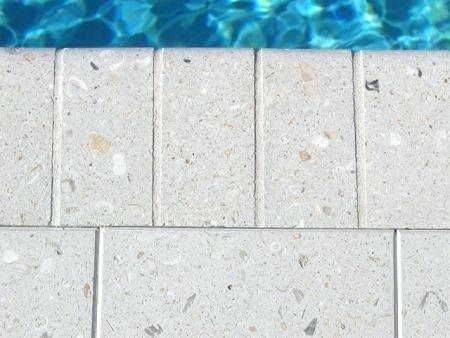 Brick Shell Stone Pavers - White