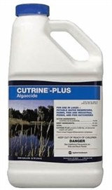 CUTRINE PLUS LIQUID GALLON