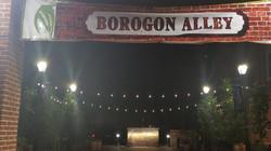 borogon2