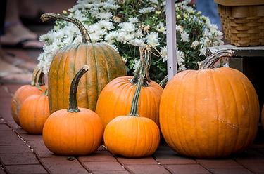 Pumpkins-gourds-6894LOW.jpg