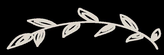 vector_beige leaf.png