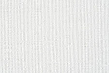 white canvas for site.jpg