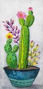 cactus dish garden.jpg
