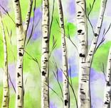 birch forest TOTE.jpg