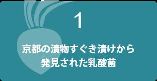 京都の漬物すぐき漬けから発見された乳酸菌
