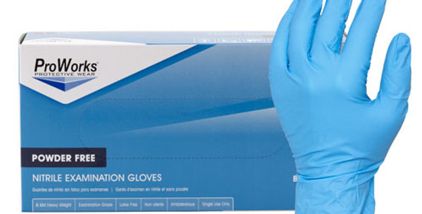 Nitrile Gloves (100 pairs)